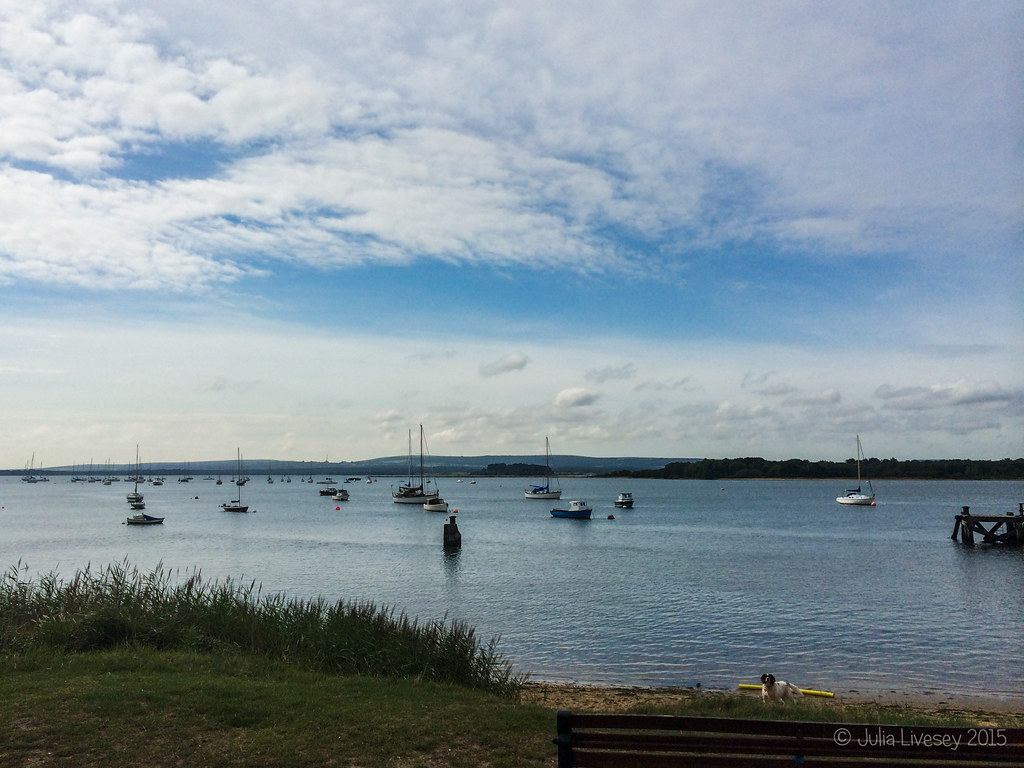 A nice morning down at Lake Pier, Hamworthy (note Max photobombing yet again)