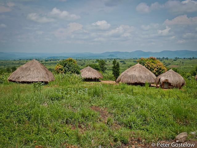 Grass huts