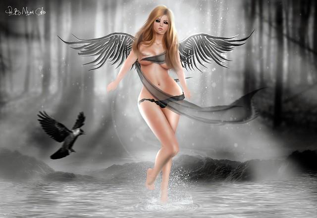 Fallen Angel ♥