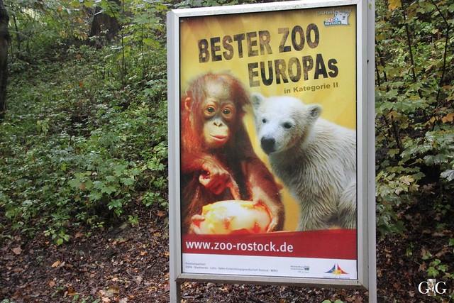 Besuch Zoo Rostock 17.10.201546