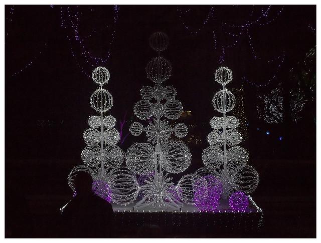Garden Glow at MoBot 2015-11-20 2