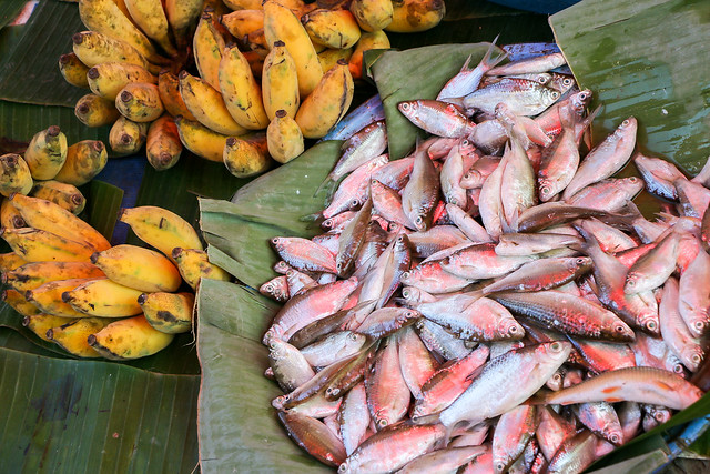 Fishes and bananas in the market, Luang Prabang, laos ルアンパバーン、青空市場の魚とバナナ