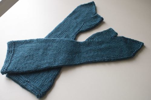 Teal Mitts
