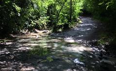 木, 2016-10-27 10:55 - Anse Chastanetに降りる道を横切る川