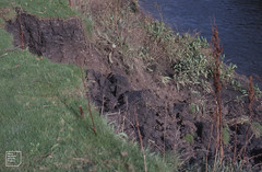 Soil profile by River Rhymney. Most organic matter in upper 12 inches. Tidal mud covering lower bank. October 1982
