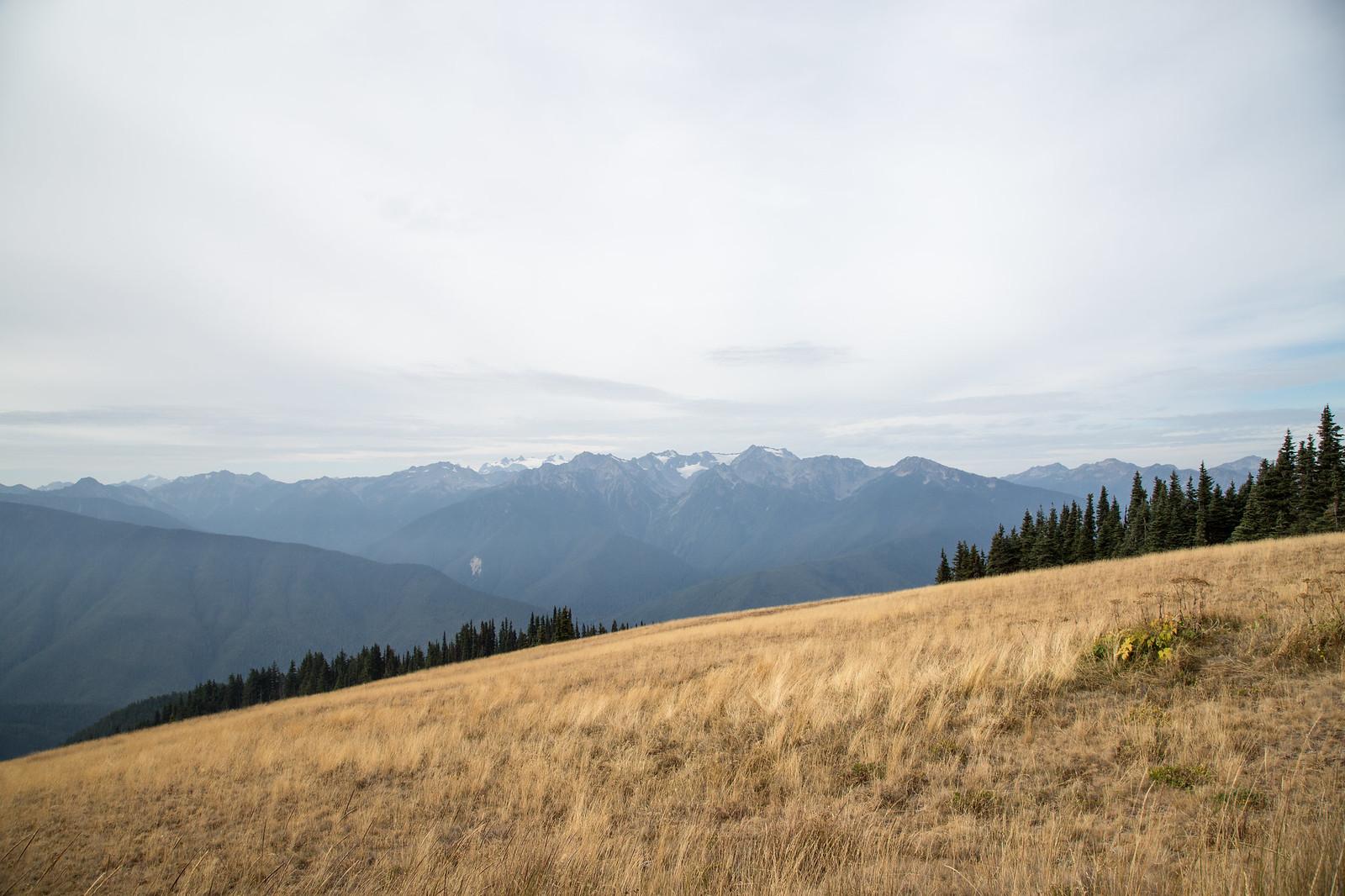 2015-08-24 Lake Sutherland-2907.jpg