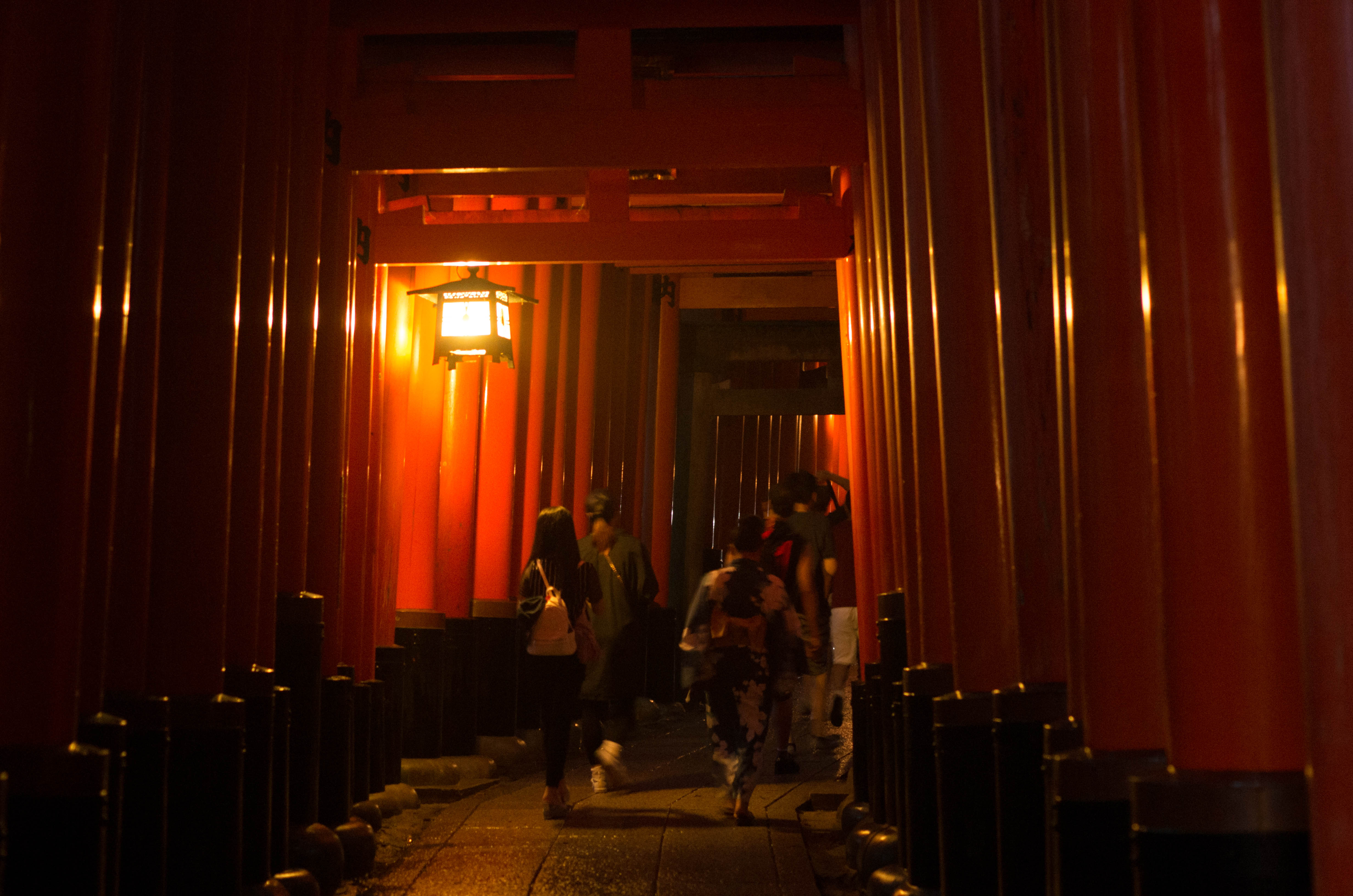 日本 關西 京阪遊