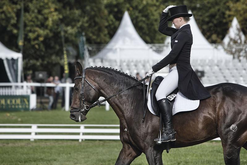 L'Anjou, terre de cheval