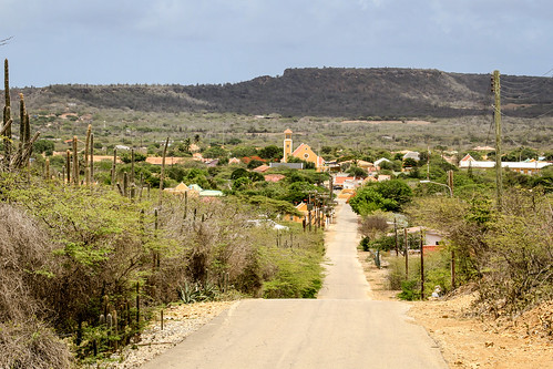 road city cactus holland church netherlands dutch village view overlooking bonaire rincon antilles boneiru