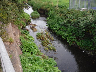The Lea, close to its source