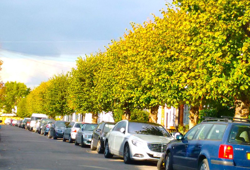 autumn15