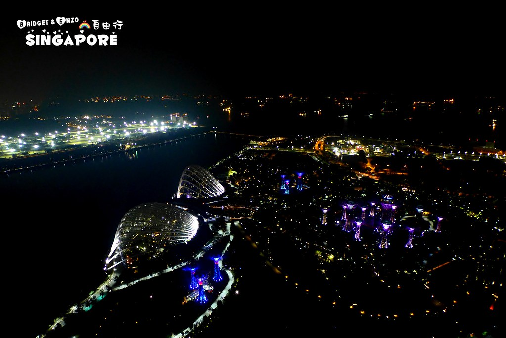 SANDS SKYPARK夜景