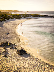 Golden hour on Rottnest Island III