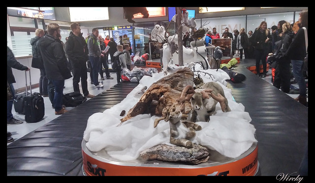 Laponia viaje Helsinki Rovaniemi - Cinta de recogida de equipaje