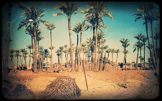 Irgendwo am Nil 1