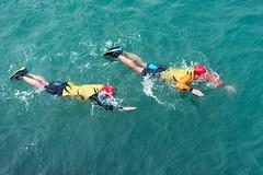 Synchronised swimming!! Image
