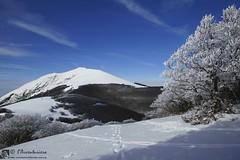 Monte Acuto da Fonte Avellana