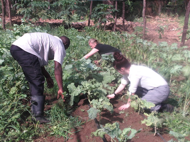 Our volunteers Leah & Sarina are very hardworking often helping out on the Shamba