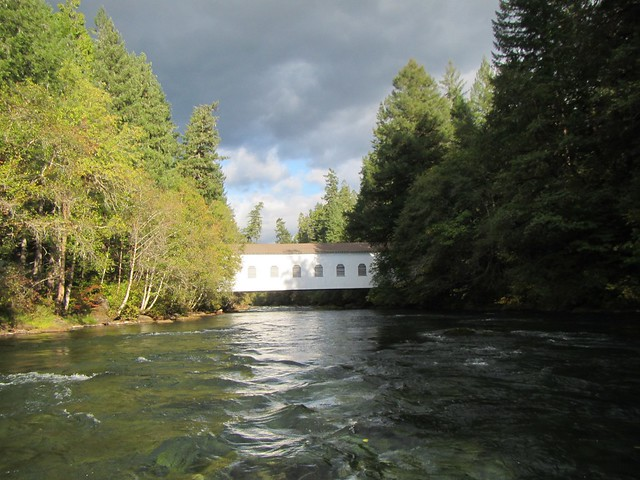 fly fishing the mckenzie river fall