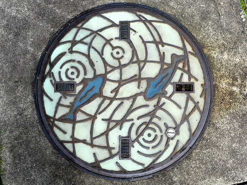Nara city Nara pref, manhole cover 3 (奈良県奈良市のマンホール3)