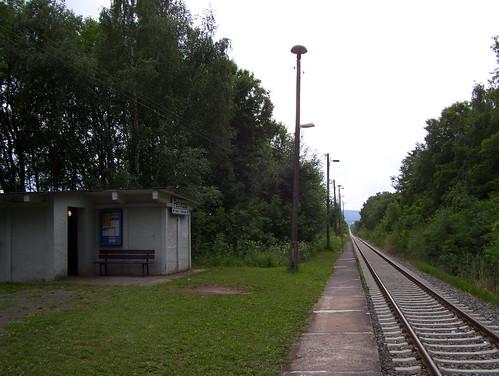 Petriroda, 11 Juni 2011