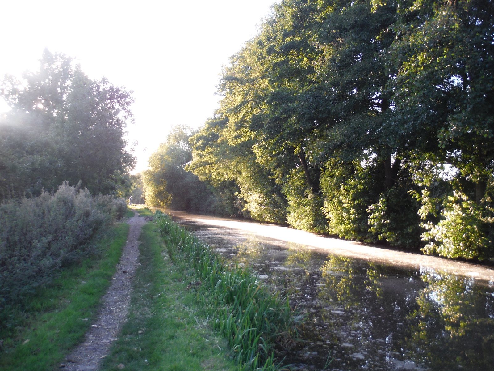 Towpath along Grand Union Canal SWC Walk 194 Aylesbury Vale Parkway to Aylesbury