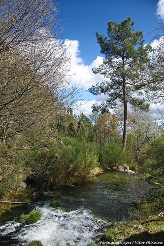 Bioparque - Parque Florestal do Pisão - Portugal