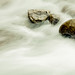 The Sinks-Wyoming by Barking Dog Photos_Bruce Gregory
