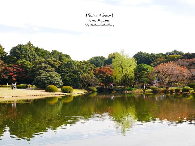 日本東京自由行新宿御苑庭園景點 (27)