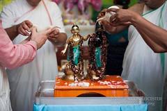 Balarama Jayatni - 20150829_10036