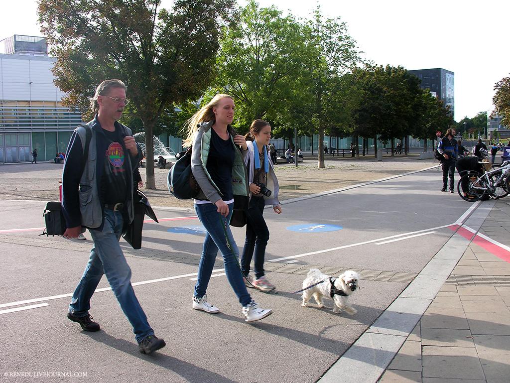 Wiener fotomarathon Renedl 4