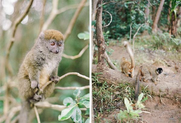 RYALE_Madagascar_Blog2_012