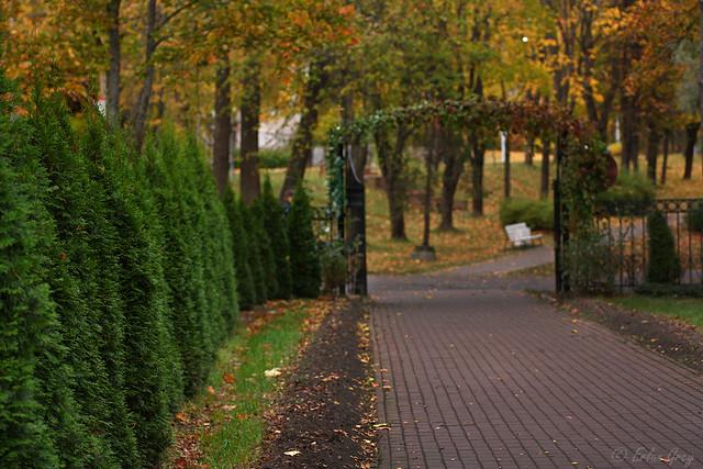 autumn_roads_10