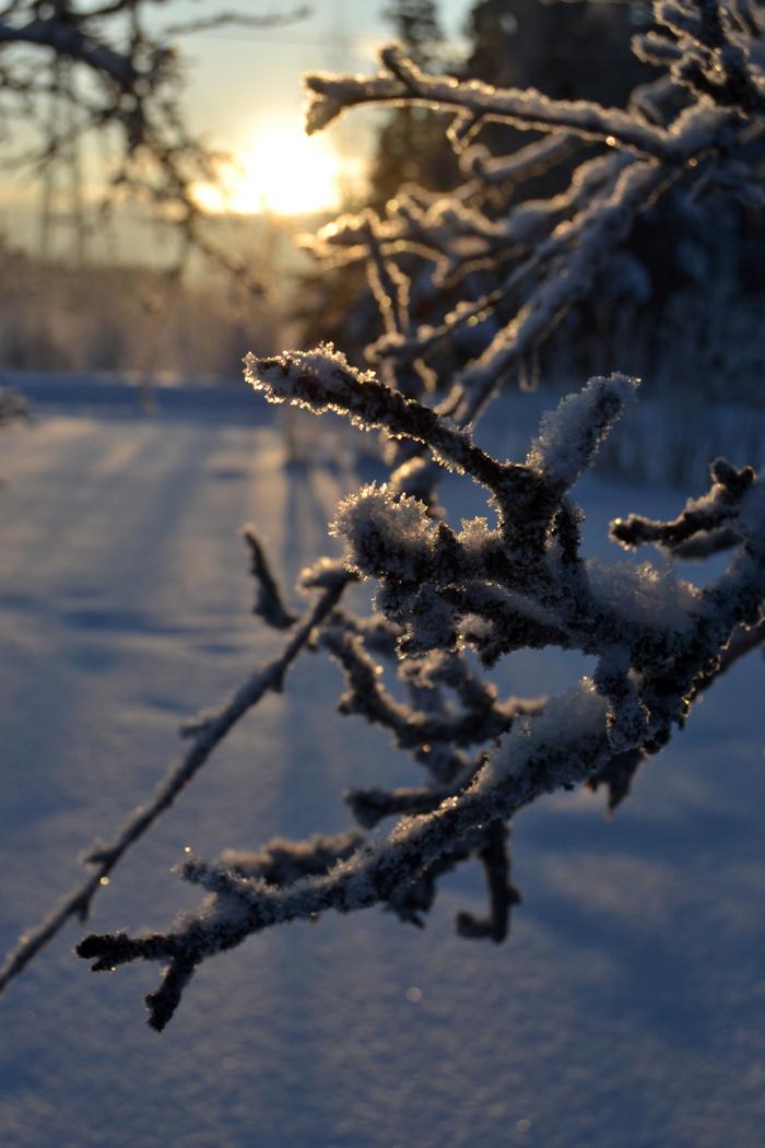 winterw4