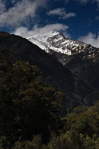 newzealand southisland westcoast haastriver mountaspiringnationalpark