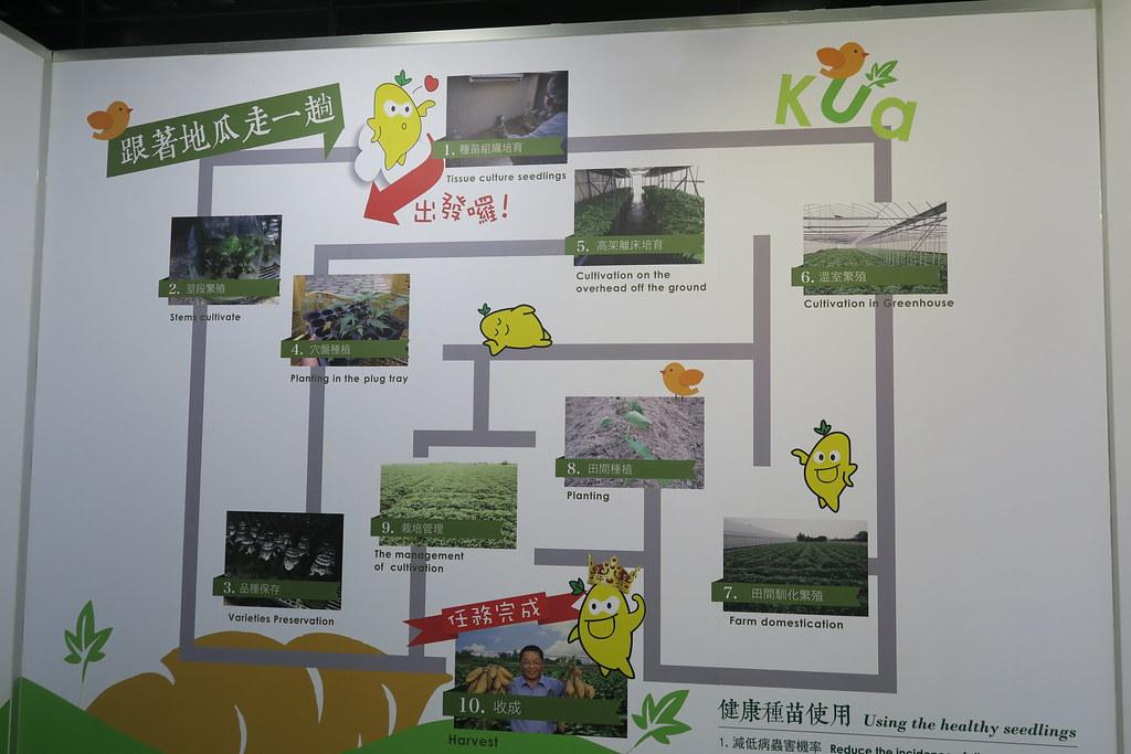 台南市新化區瓜瓜園生態故事館 (11)
