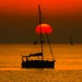 sailing in a golden sea - Tel-Aviv beach by Lior. L