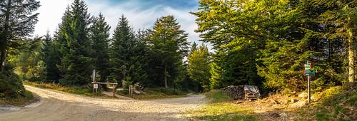 Bayerischer Wald.Geisskopf