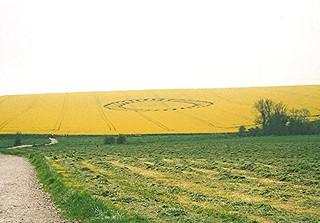 Crop Circle?  - West Kennet (1998)