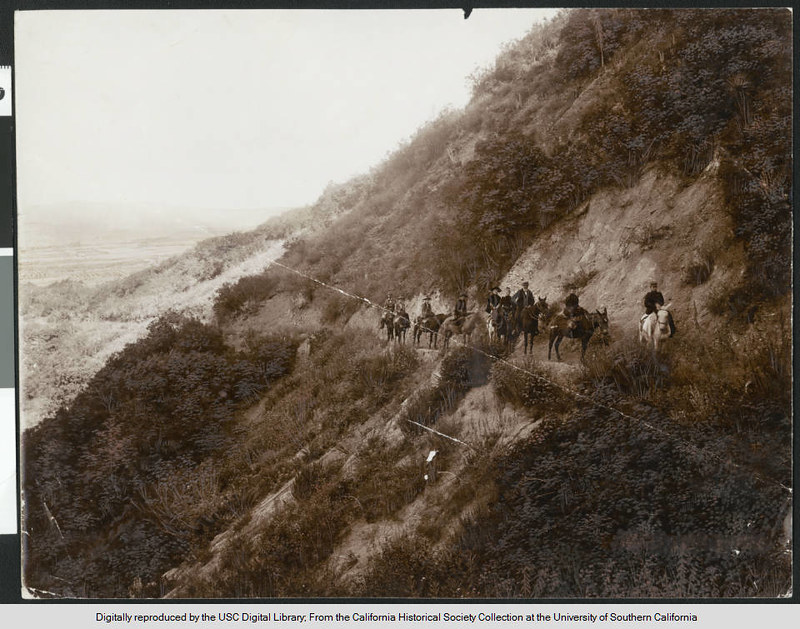 Group of nine people riding mules on the trail to Mount Wilson