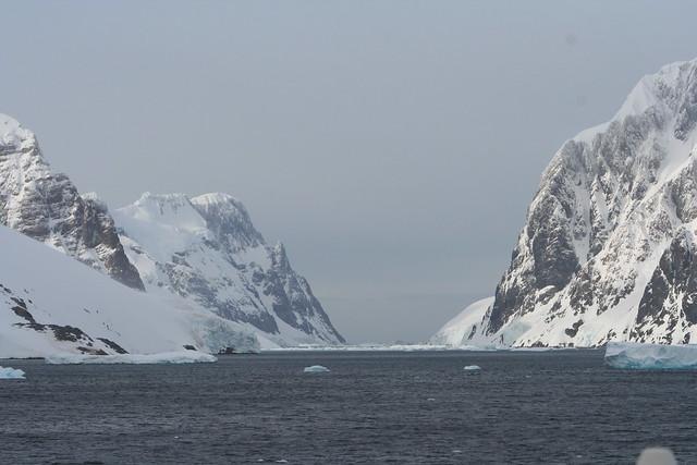 Antarctica 2006 (23)