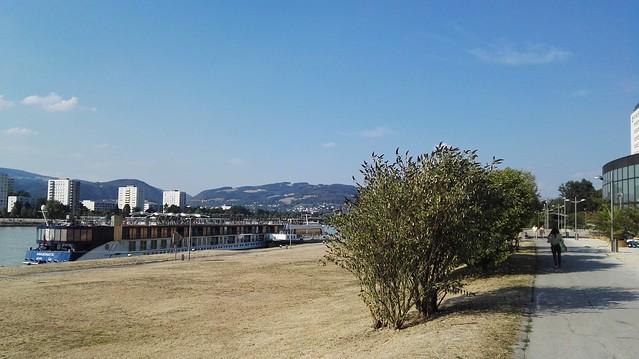 Ein Donaudampfschiff und das Brucknerhaus