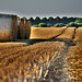 Erntespuren - harvest marks by victorlaszlo73