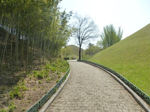 Co-Gyeongju-Parc des Tumuli (17)