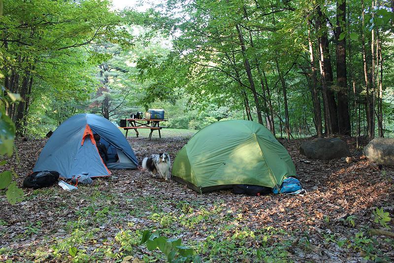teltanvartija