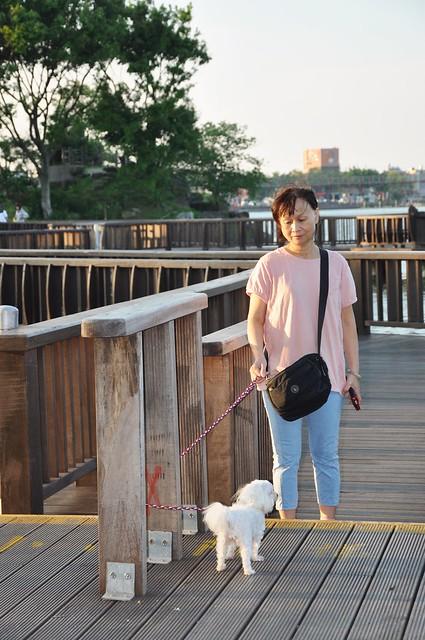 龍潭大池 (21)