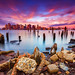 Boston Skyline at Sunrise over Boston Harbor and Decayed East Boston Shoreline with Nautical Rope and Clouds by Greg DuBois - Sponsored by LEE Filters