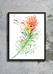 Feather Bird Watercolor Archival Print Peacock Watercolor painting Home decor Animal Watercolor Feather art Feather Poster watercolor print