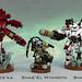 Tau XV22 commanders and Darkstrider by Garry_rocks
