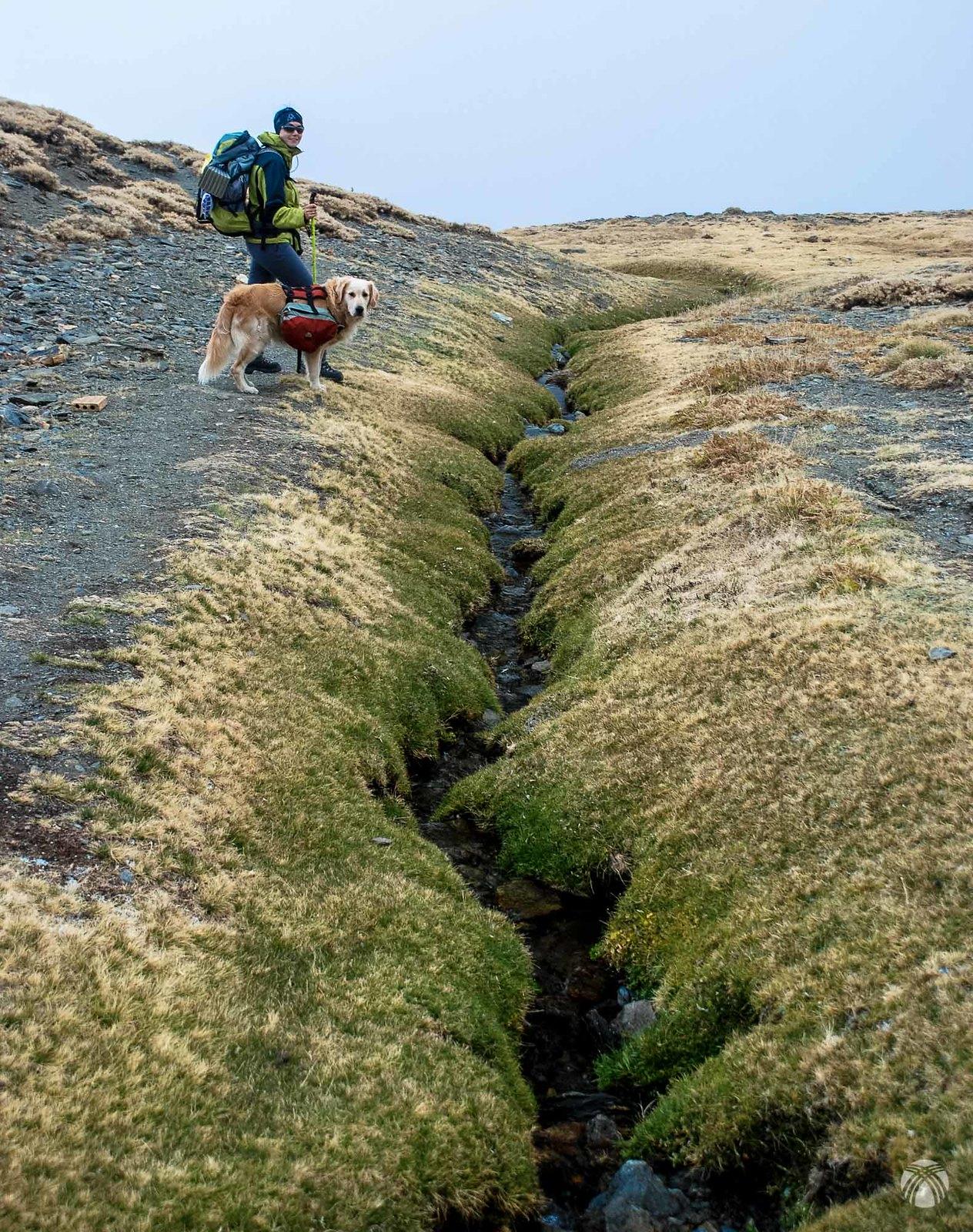 Los arroyos bajan casi secos